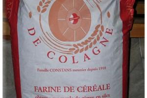 Sac pour professionnels farine conventionnelle