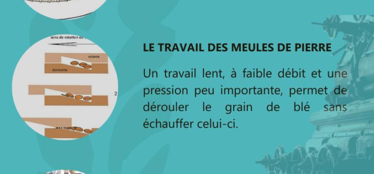 Infographie N°1 : La mouture sur meule de pierre au moulin de Colagne