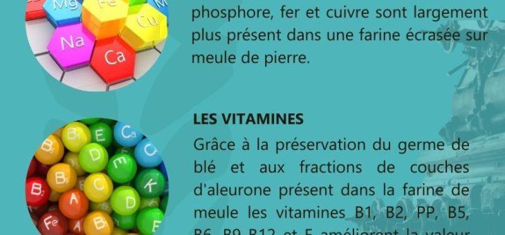 Infographie N°3 : Farine de meule et nutrition